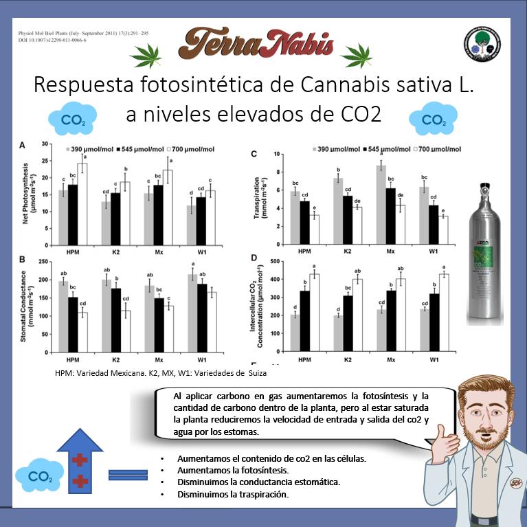 Dr. Nabis respuesta co2 cannabis