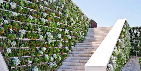 Ejemplo de muro verde