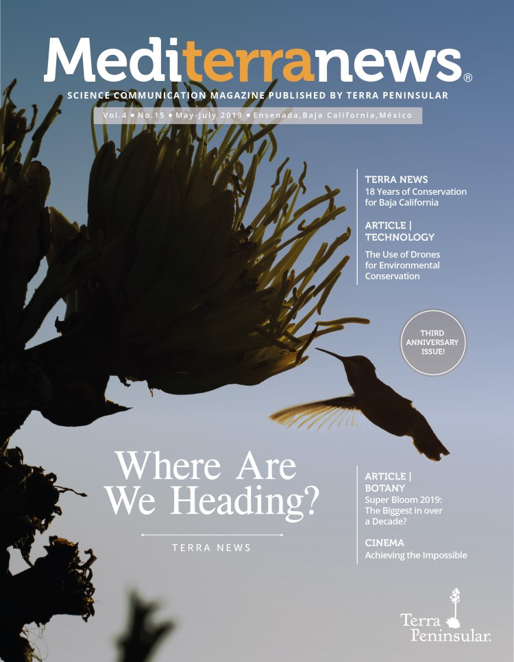 Vol. 4 Issue 15 (April 2019)