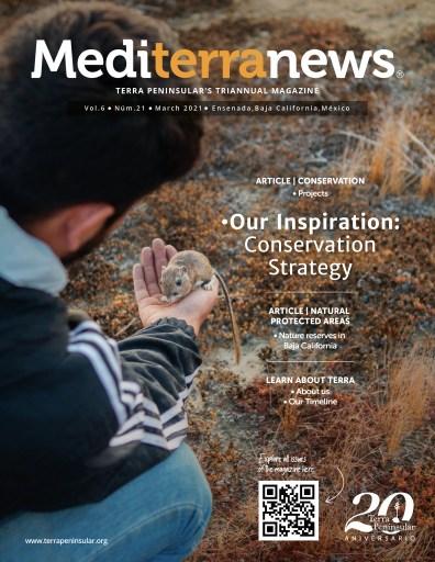 Mediterranews Vol. 6 No. 21 | March 2021