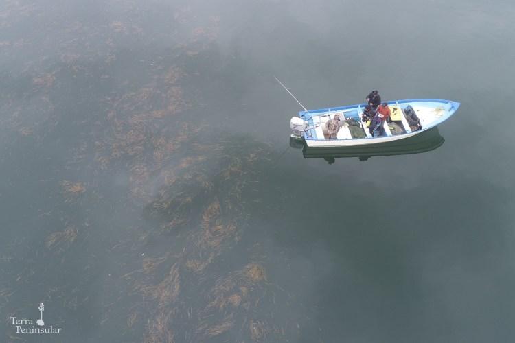 Recorrido en bote San Quintín