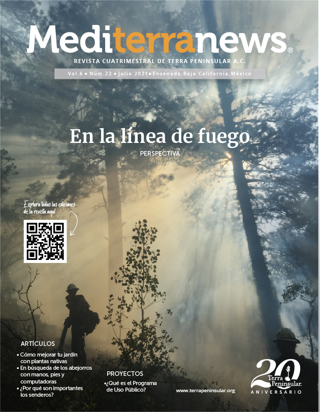 Revista Mediterranews Vol. 6 Núm. 22 | Julio 2021