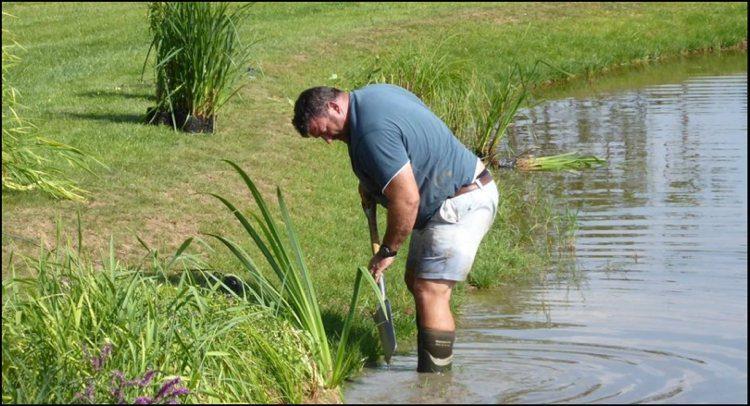 terraqua_aquatic_planting