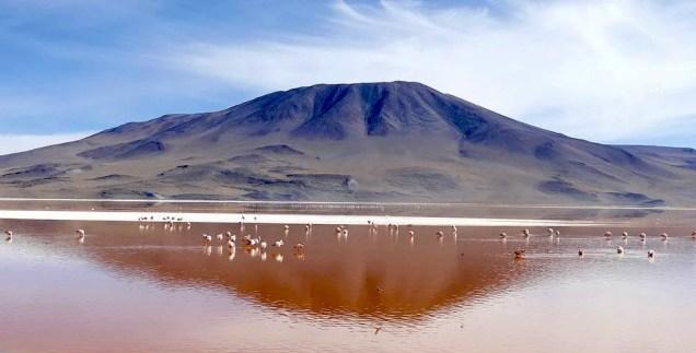 Riserva Eduardo Avaroa - Laguna Colorada
