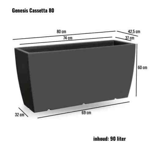Genesis Cassetta