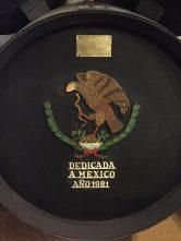 mexicobota1981