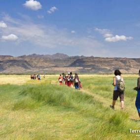 Safaris Kenia y Tanzania. Safari en camión. Masai Mara, Serengeti, Ngorongoro, Manyara, Tarangire. Viaje de aventura