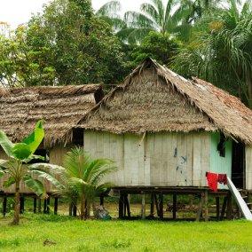 Viajes-Amazonas-TerresLlunyanes-Dollarphotoclub-08