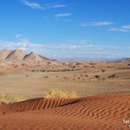 Desierto del Namib. el desierto más antiguo del mundo.
