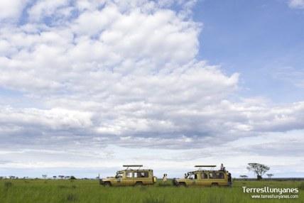 Viajes-Uganda-coches