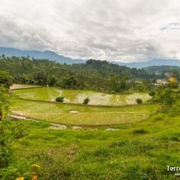 """Pasar la noche en una casa local """"tangkonan"""" en un poblado Toraja en las montañas después de un buen día de trekking entre arrozales."""