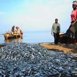 Llac Victòria i pobles de pescadors
