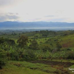 Les Rwenzori, les muntanyes de la lluna