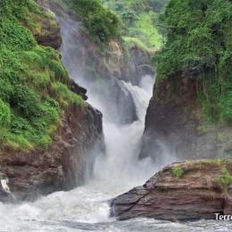 Murchison Falls N.P i Cataractes Murchison
