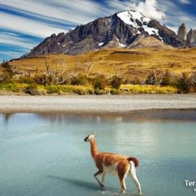 Viajes Patagonia.