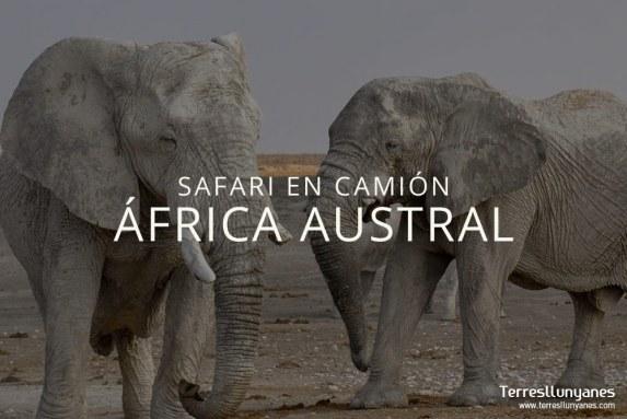 Safari África austral