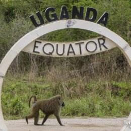 Fer-se una foto a l'equador