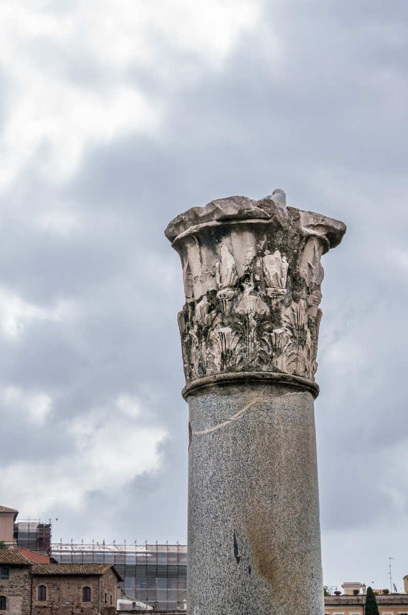 Forum of Augustus_DSC7032