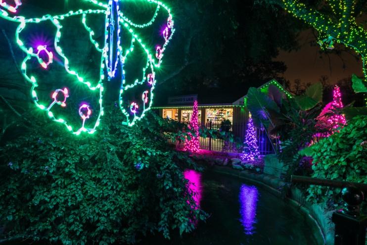 Zoo Lights_7591