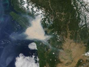 Satellite photo of smoke from a forest fire (The Orange Light of Dawn)