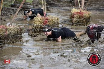 spartan-mud-crawl
