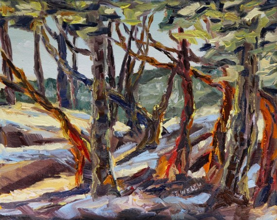 End of Day with Arbutus 8 x 10 inch oil on canvas by Terrill Welch 2013_07_08 003
