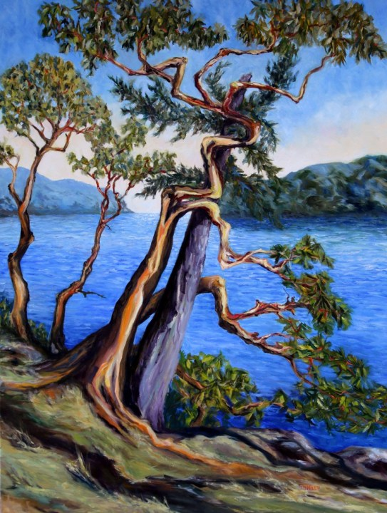 Southern Gulf Islands Afternoon 48 x 36 inch oil on canvas by Terrill Welch 2016-02-05 IMG_8448