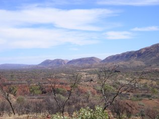 Namajiras blue macdonell ranges