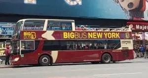 Take a big bus tour