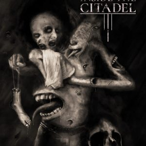 sick inside the citadel