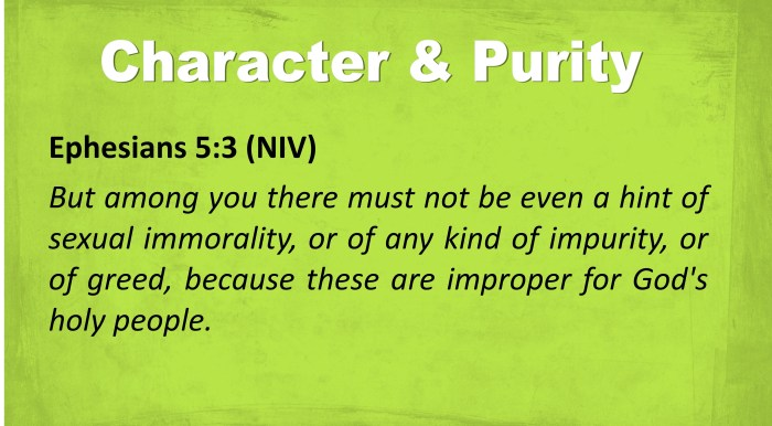 BVD - Character and Purity