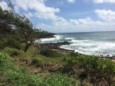The walking path along the northeastern shore of Kauai. Simply awesome.