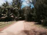 Here we are at the end of the dirt road. The paved road ended a ways back.