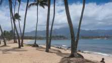 beach-at-haleiwa-used-2016-12-09