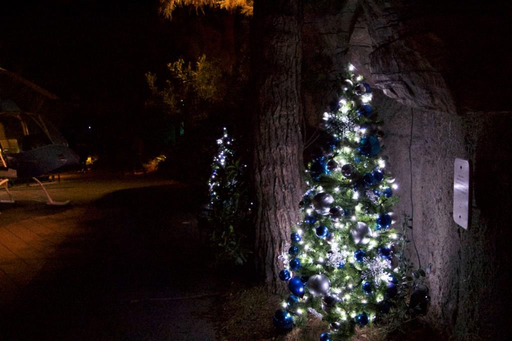 Xmas trees at Jungle Bells - San Diego Zoo - DSC_2364.jpg
