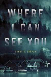 Where I Can See You by Larry D. Sweazy
