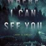 Review of Where I Can See You by Larry D. Sweazy