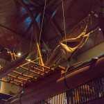 Friday Fotos – Bishop Museum