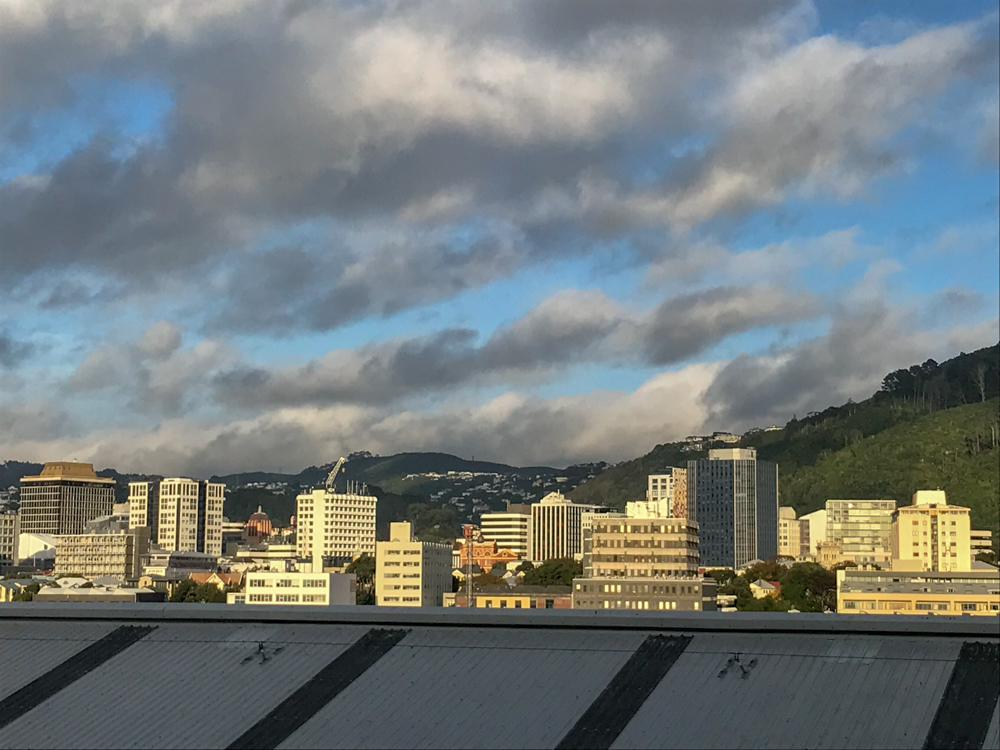 Wellington from our balcony