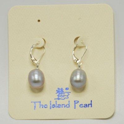 Grey Pearl Lever Back Earrings