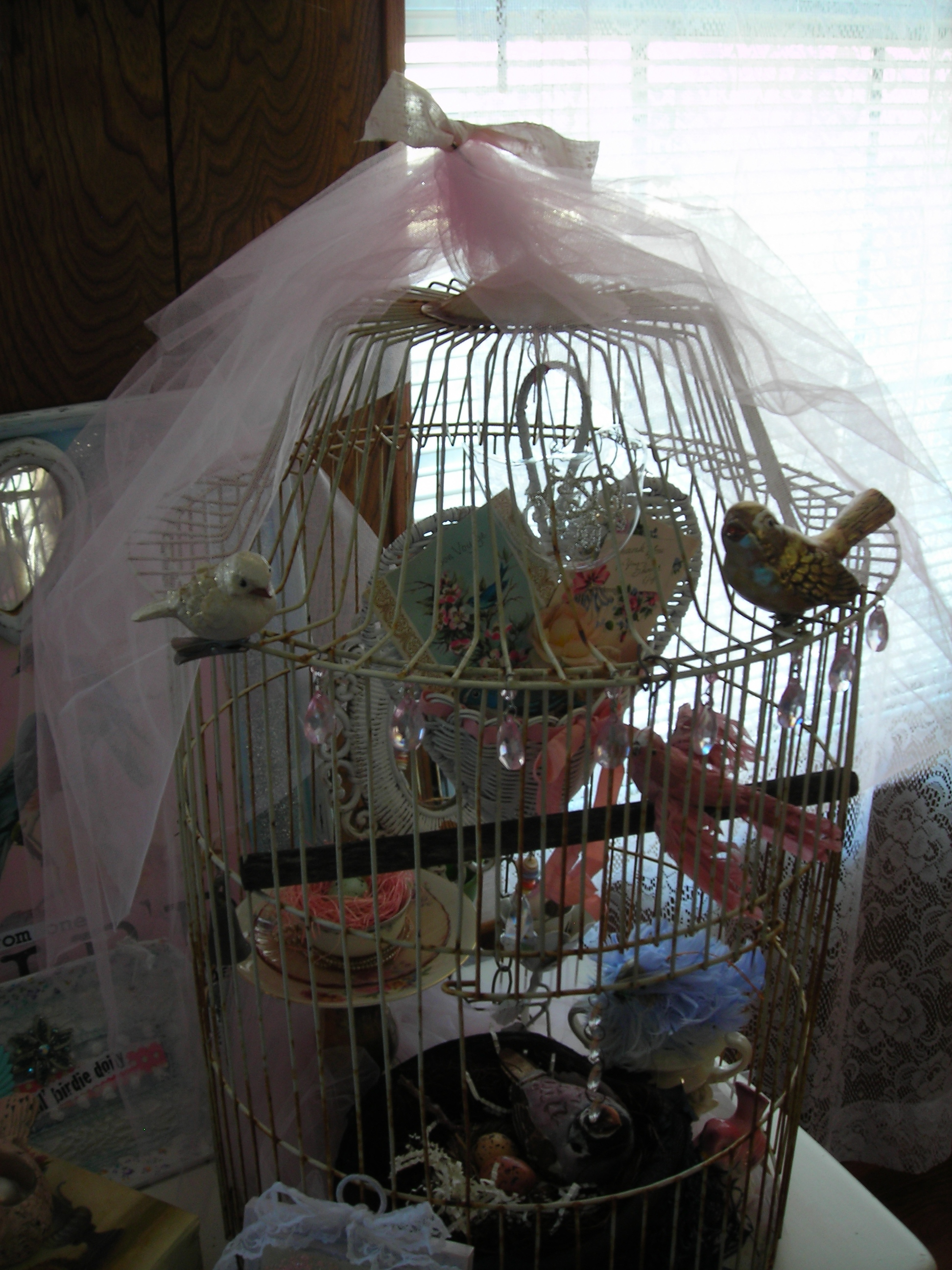 old bird cage filled with birds and fluff ... love it!