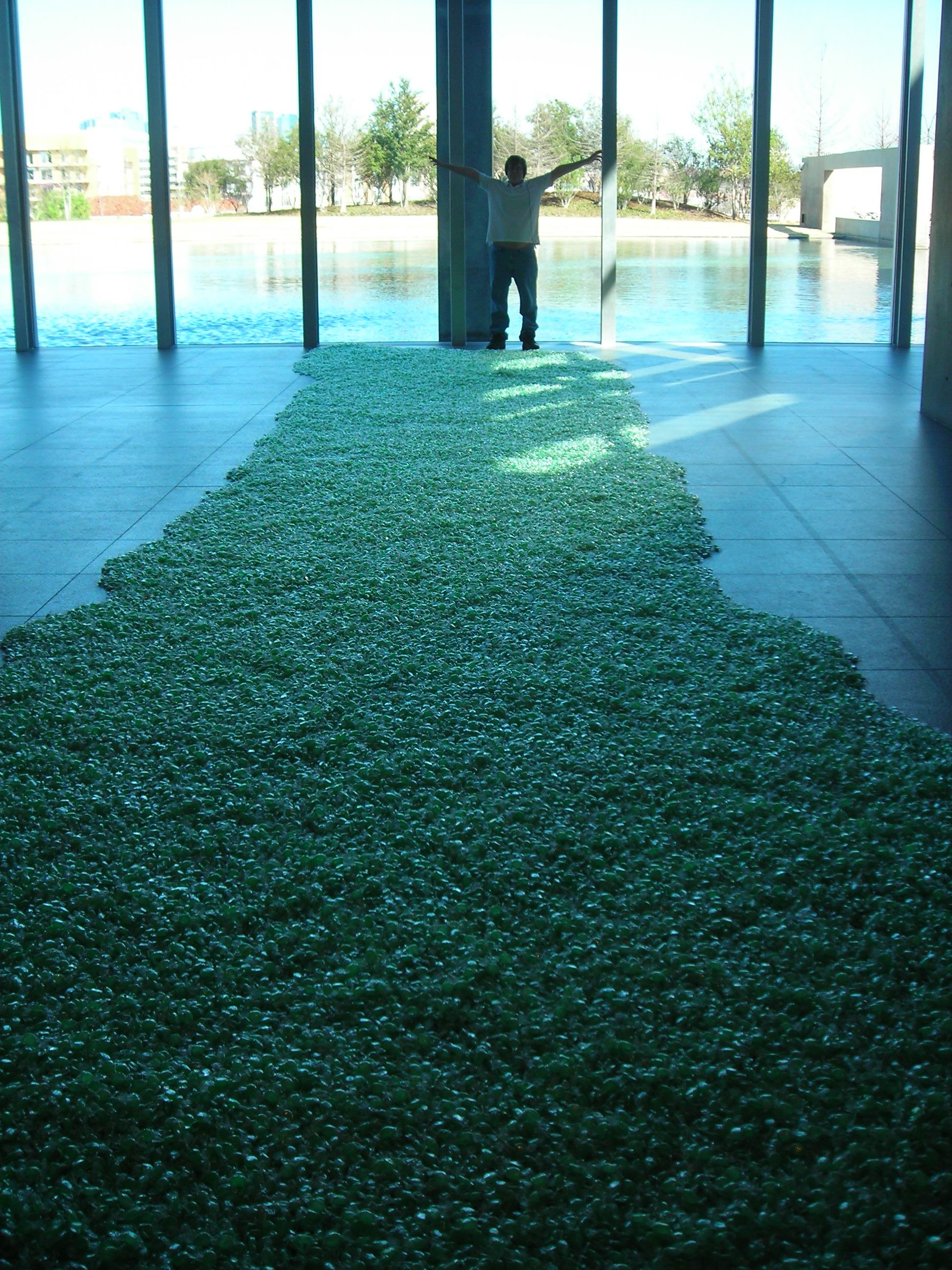 that's my baby at the end of this 'art' exhibit ... nothing but green cellophane-wrapped candies on the floor. art. modern, that is.