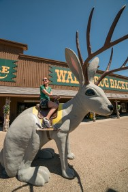Megan, from UCM, rides the famous Wall Drug jackalope! © Terry Ownby