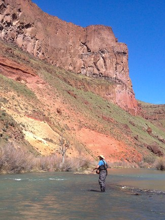 Kash fishing some riffles below the tunnel, Owhyee River.