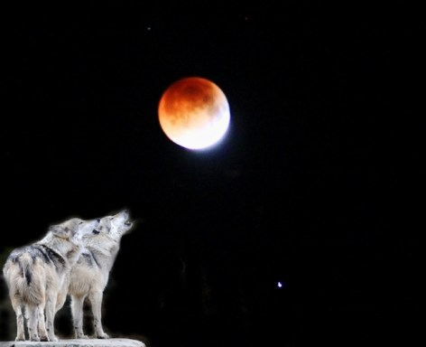 full moon eclipse stars and howling wolves (640x521)
