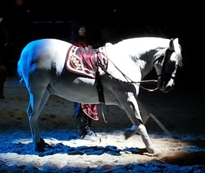 horse Medieval Times