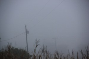 Showing depth of fog via telephone poles