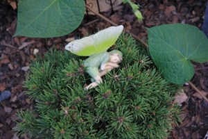 Tiny fairy sleeping
