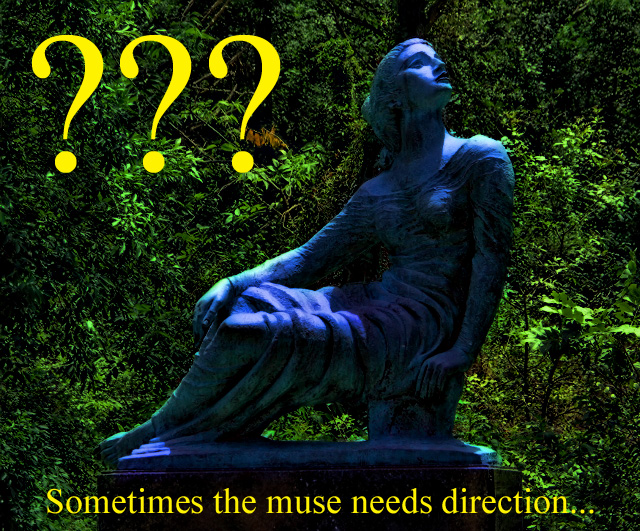 muse needs direction (640x531)