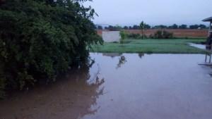 Lake in Side Drive